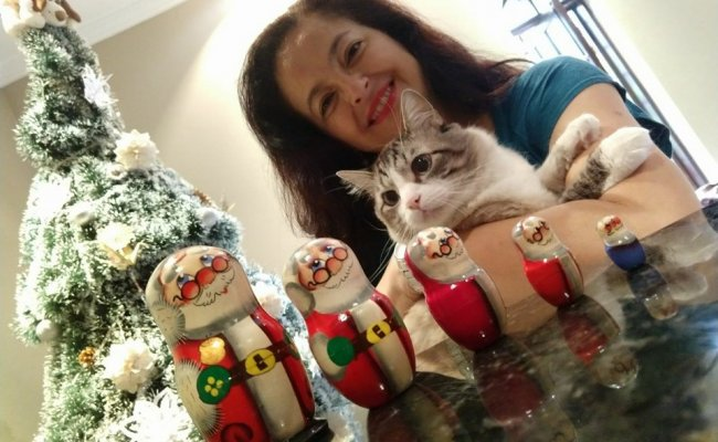 Sandra, Helio e o Gato Cruel